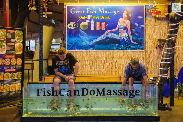 Fish Massage at Pub Street