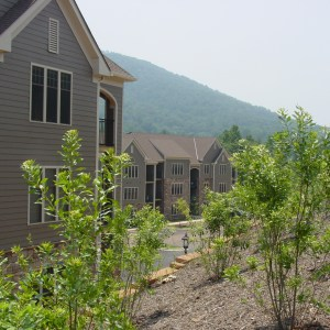 Stone Creek Village