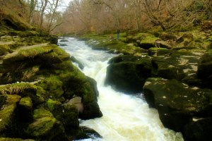 experiences before I die - photo of moving water: The Strid, Bolton Abbey, Yorkshire