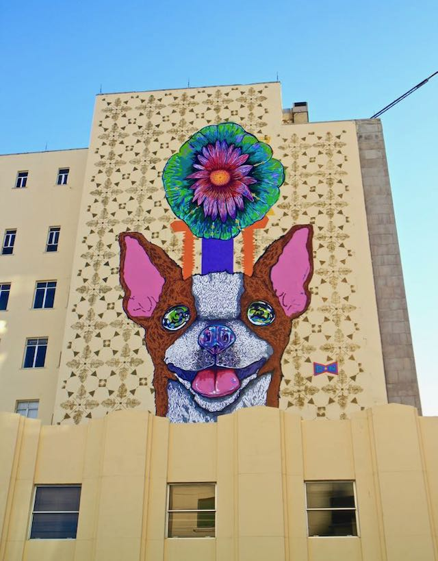 a picture of a street art chihuahua in Chihuahua, Mexico