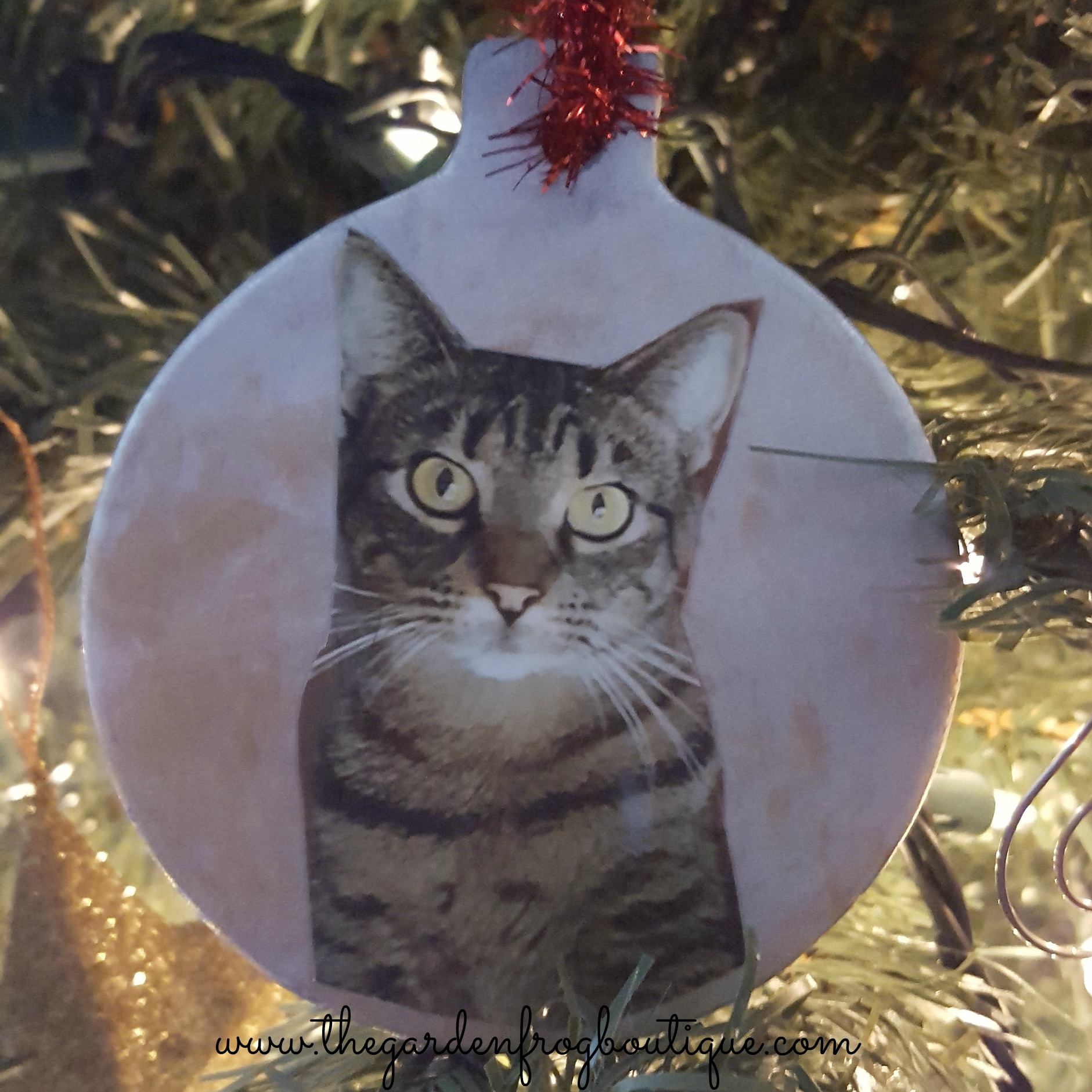 heres the ornament with a cut out picture and mod podge pet photo diy christmas ornaments from