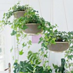 Diy Indoor Hanging Planters That Add Style To Your Space The Garden Glove