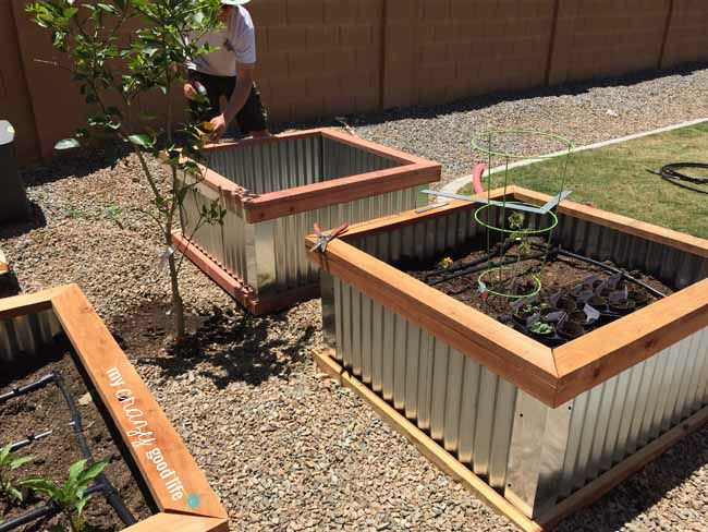 My Crazy Good Life Raised Garden Beds with Corrugated Metal