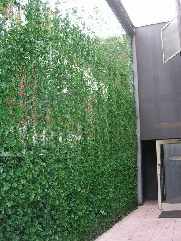 Green Vinyl Fence Panels