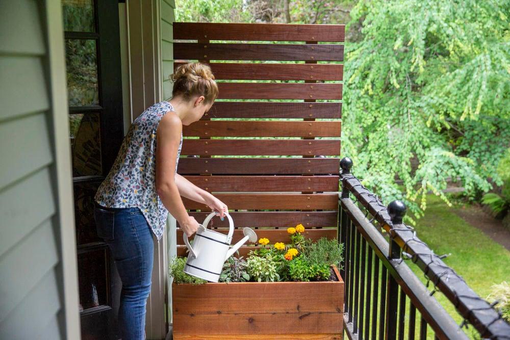 Diy Outdoor Screens And Backyard Privacy Ideas The Garden Glove
