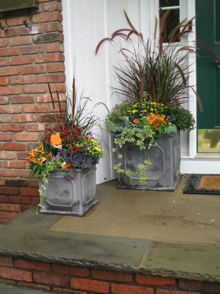 Unusual Flower Planters
