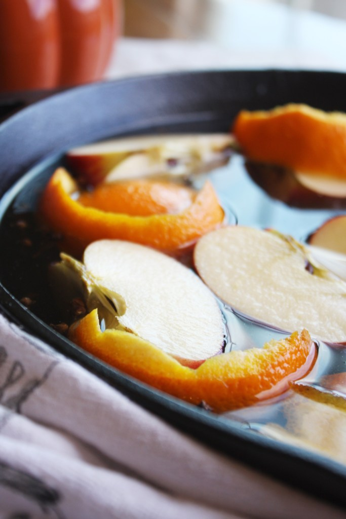 Autumn Simmer Pot - Fill your house with the smell of fall as this mixture simmers away on your stove top! The perfect way to celebrate this beautiful season. TheGarlicDiaries.com