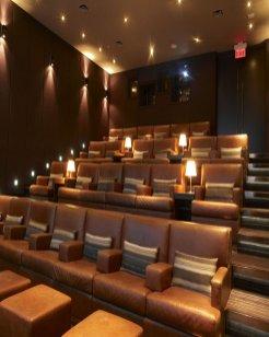 Hazelton Hotel screening room