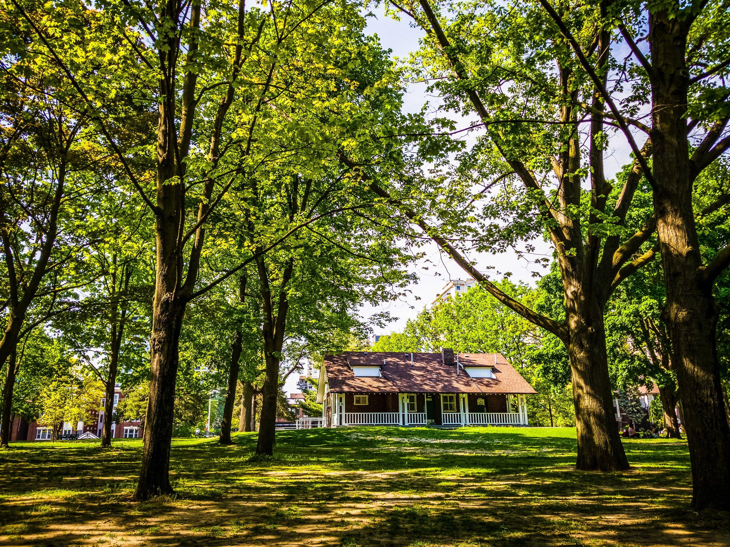 High Park's Chess House