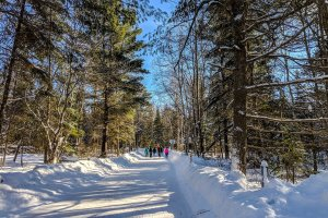 Arrowhead Provincial Park skating trail