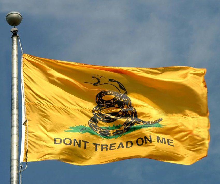 https://i2.wp.com/www.thegatewaypundit.com/wp-content/uploads/2013/04/gadsdenflag.jpg