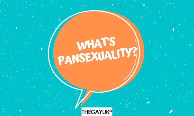 What does pansexual and pansexuality mean?
