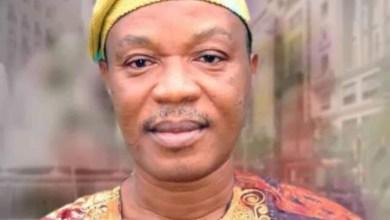 Photo of Ogun Chairman-nominee Dies Hours Tto Screening