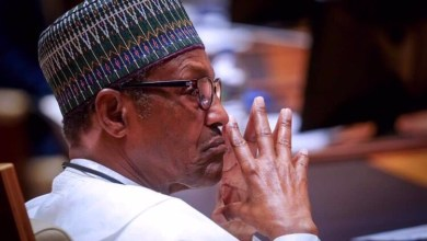 Photo of Buhari Terminated Our Counter-Insurgency Operation to Satisfy America – Military Contractor