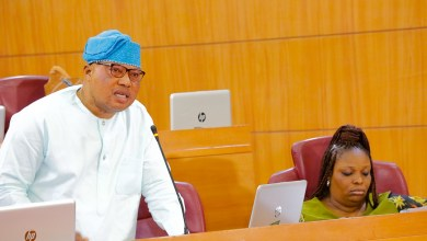 Photo of More Troubles For Sacked Lagos Commissioner As She Faces Assembly Probe