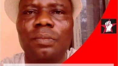 Photo of Senate Receives Petition Over Journalist Killed During Shiite Protest