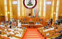 Senate Gives Nod To Establish Orthopedic Hospital, One Other