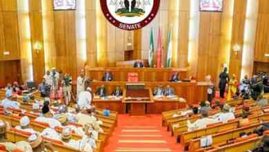 Photo of Senate Confirms Police Commission, Consumer Protection Nominees