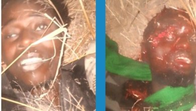 Photo of Troops Kill Abul-Bas, Ibn Habib, Boko Haram's Factional Commanders + Photos