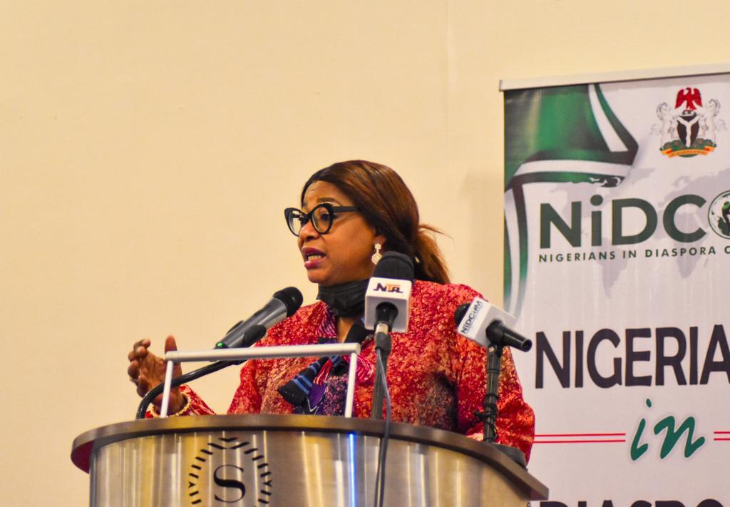 Nigerians In Diaspora Are Not Criminals - Akande-Sadipe