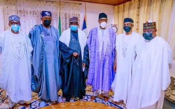 Images As Gbajabiamila, Faleke, Other Reps Pay Sallah Homage To Buhari In Daura