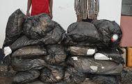 NDLEA Nabs Drug Kingpins At Abuja Airport, Surulere + Photos