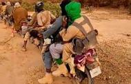 Dislodged Zamfara Bandits Beg For Food; Turn To Robbers