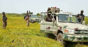 Troops Eliminate Six ISWAP Terrorists, Recover Arms, Ammunition, Others