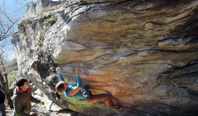 Vertics Climbing Sleeves
