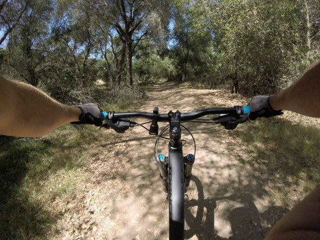 Timber Mountain Bike Bell