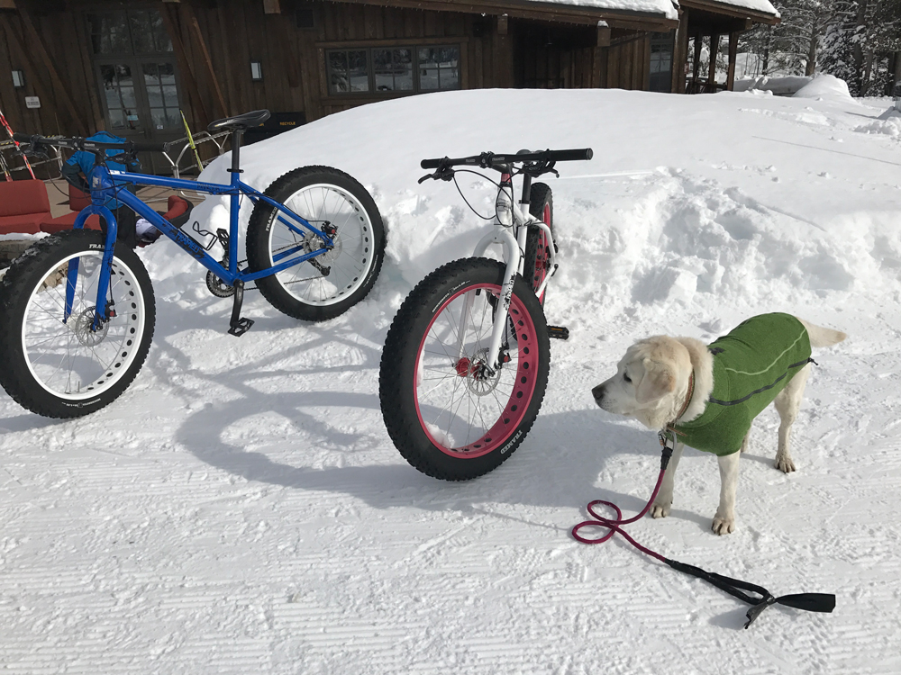 fat bikes tahoe donner