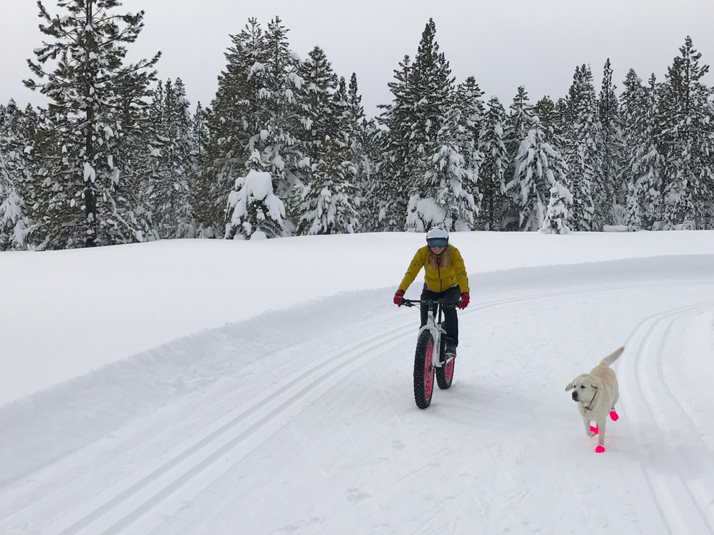 Lola fat biking