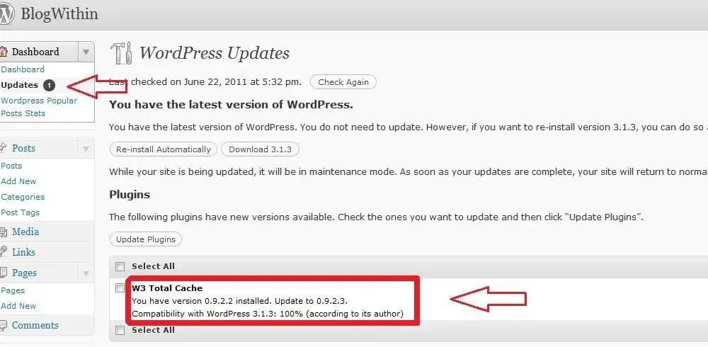 How To Update WordPress Plugins Using CPanel