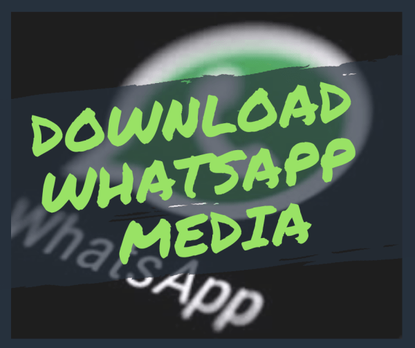 How to download whatsapp status media on android