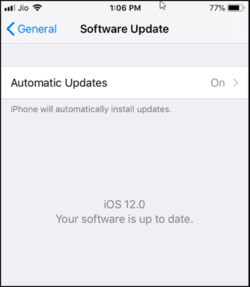 iOS 12 Automatic Update