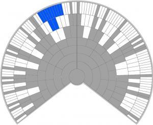 Genetic-Tree-Showing-Ethnicity-Loss