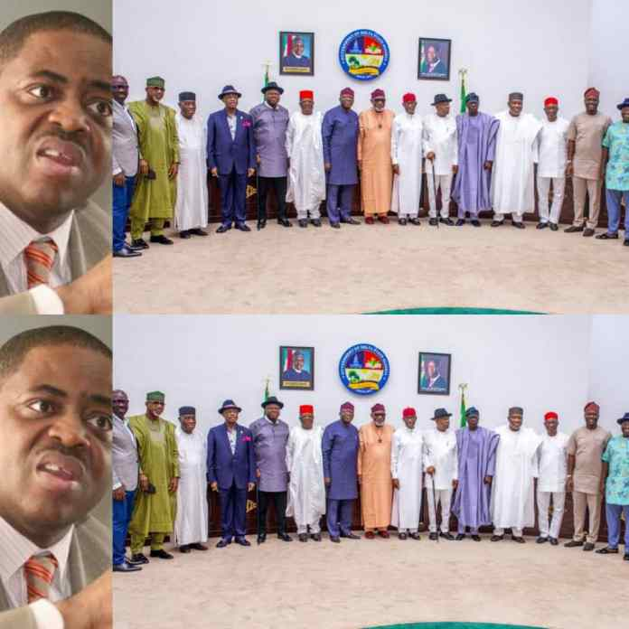 Fani-Kayode Reacts As 17 Southern Governors Ban Open Cattle Grazing