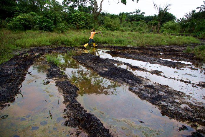 World Environment Day 2021; Celebrating Niger Delta Underdevelopment