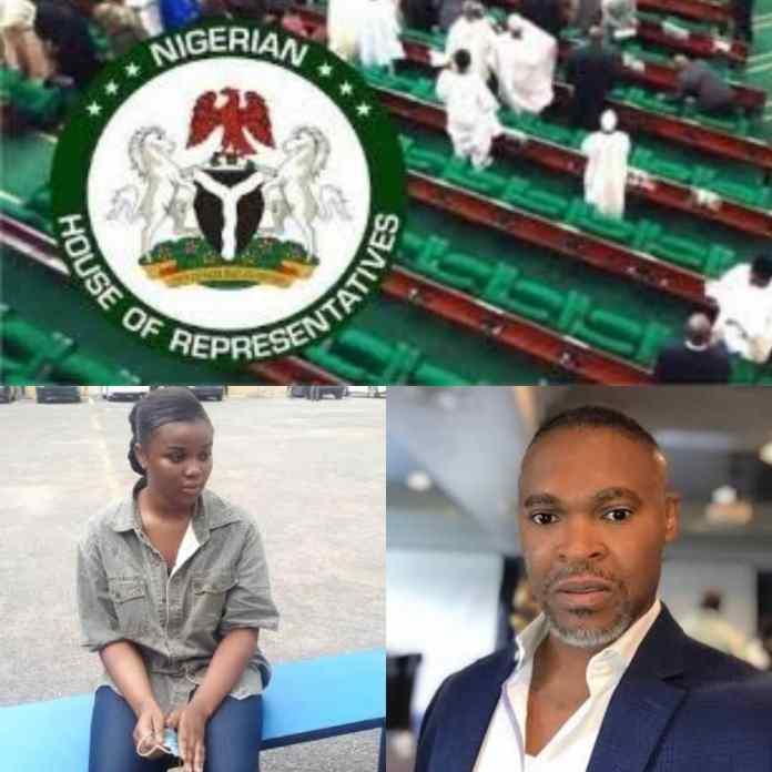 Reps Gives Strong Directives To IGP Usman Over Chidinma Custody In Police Detention