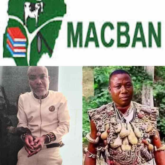 Miyetti Allah Boasts On Using Spiritual Powers To Send Nnamdi Kanu And Igboho To Jail