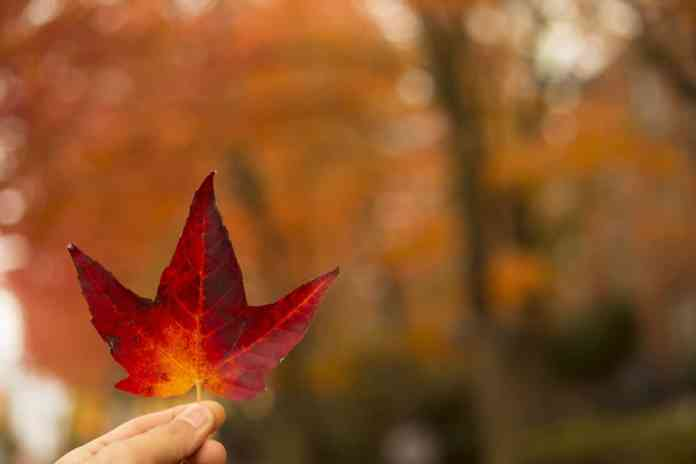 How to lower your heating bill this fall and winter