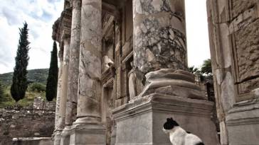 Efes Celsus Kütüphanesi