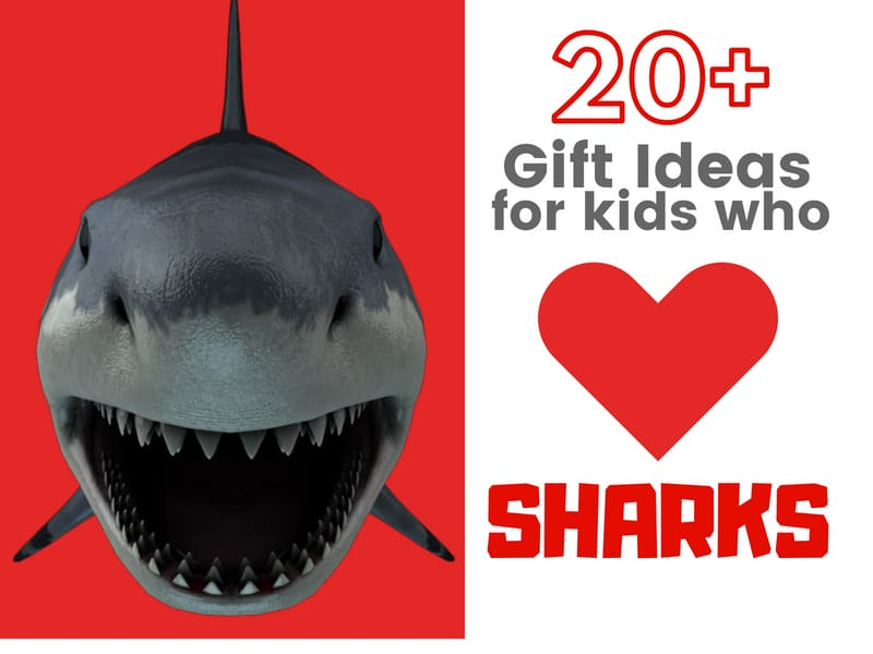 Gift ideas for kids who love sharks
