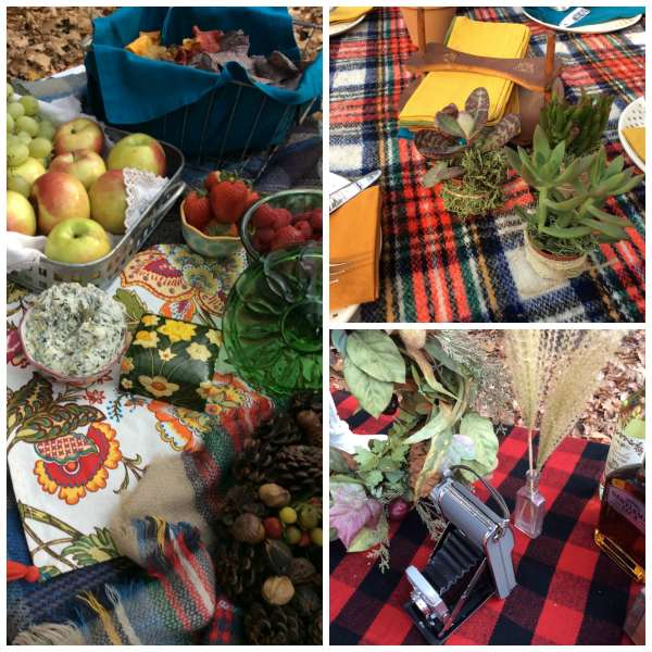 succulents-and-plaid-hodge-podge-tablescape