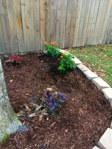 Adding a Flower Bed to the Yard
