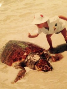 a ginormous turtle, washed up on the shore!