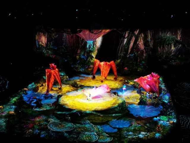 Cirque du Solèil