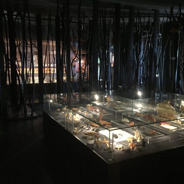 museo del paesaggio sonoro-thegiornale