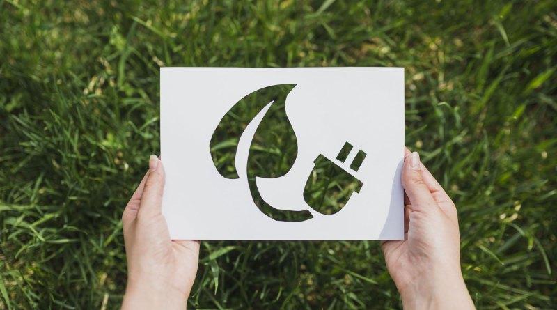 5 influencer ecostostenibili che dovresti seguire