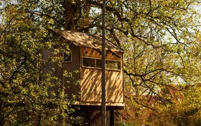 Case sull'albero in Piemonte: dove le possiamo trovare?